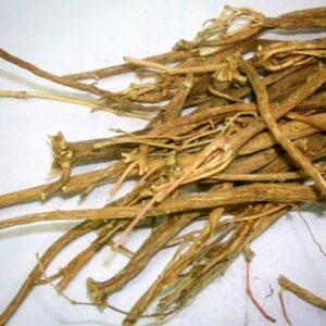 Akarkara Roots   Herbal Arcade