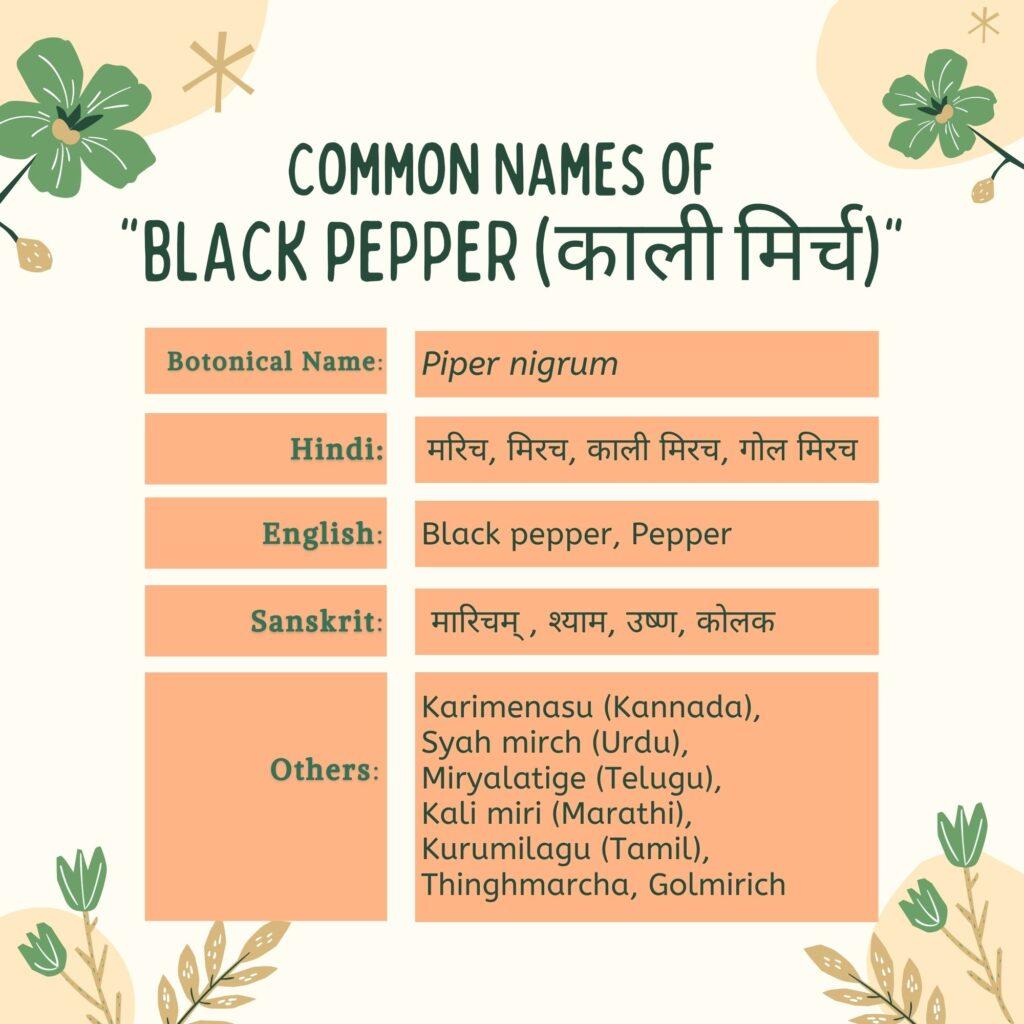 kali mirchi Common Names