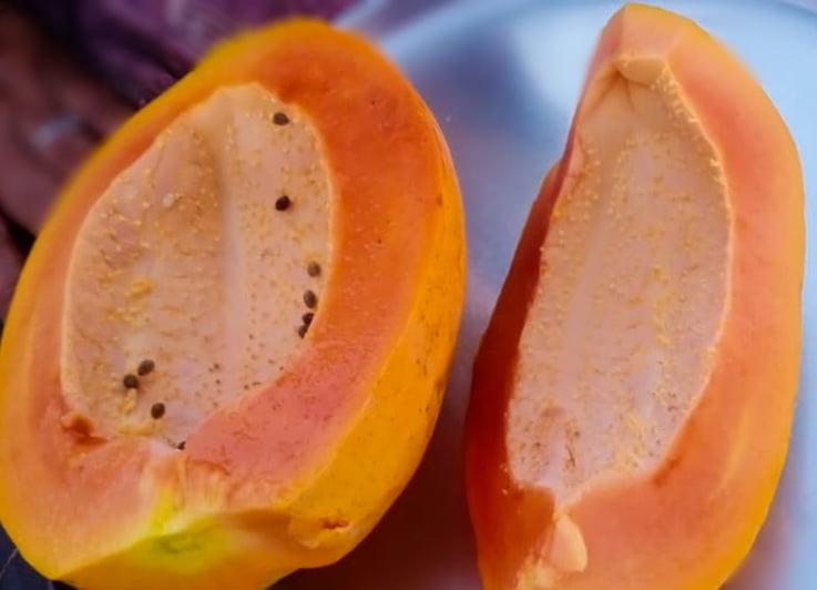 papaya(पपीता) Herbal Arcade