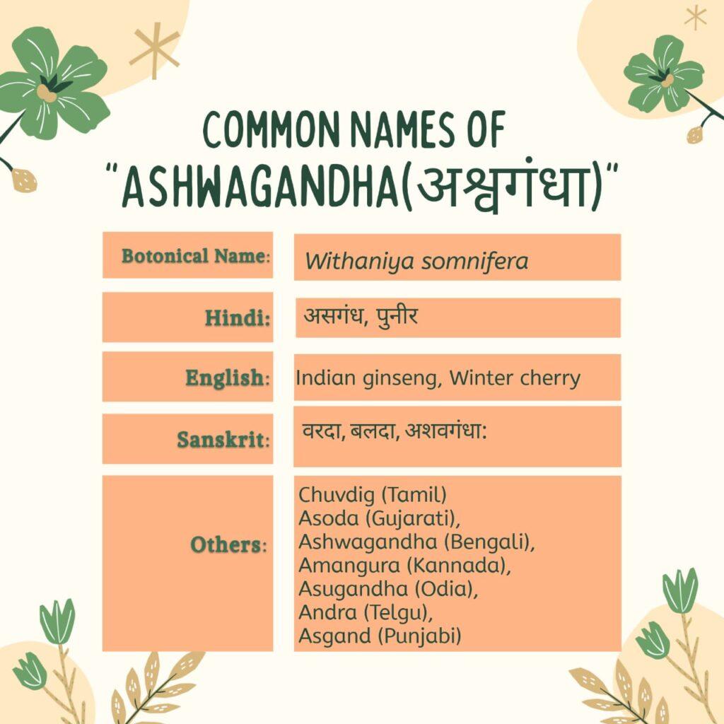 Ashwagandha Common Names Herbal Arcade